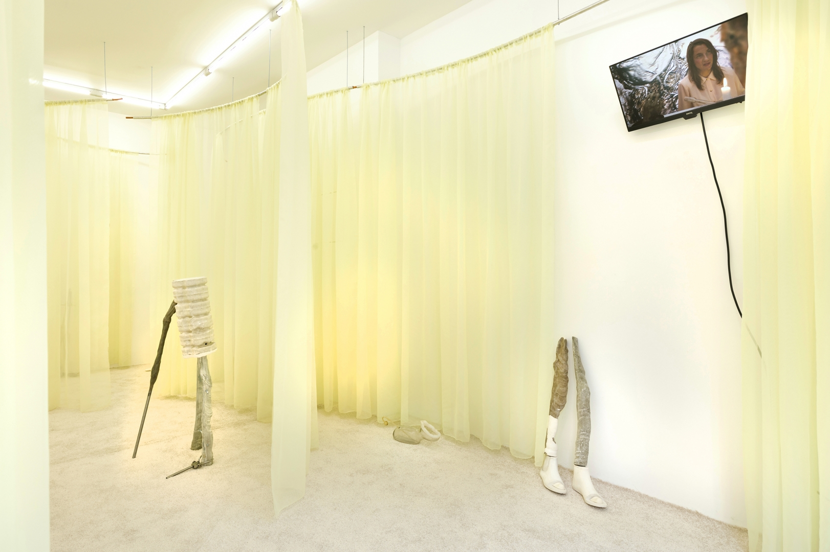 05 Youth Enhancement Systems, 2019 - Installation view at Galerie Valeria Cetraro, Paris