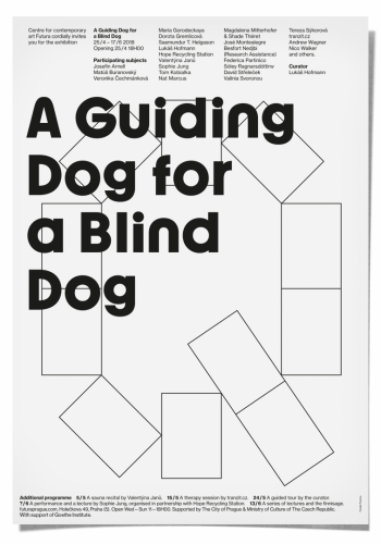 A Guiding Dog for a Blind Dog